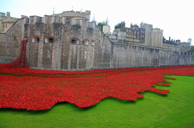 Tower of London Poppy Display